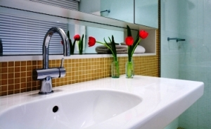 aging in place home remodeling for the bathroom